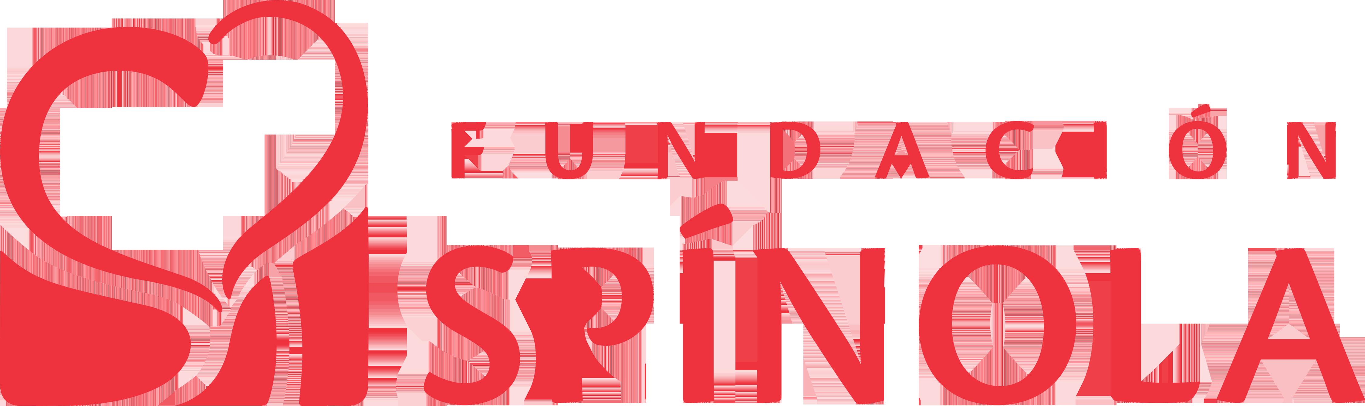 Resultado de imagen de logos fundacion spinola